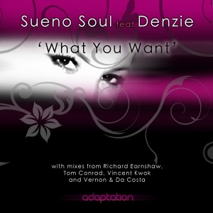 Sueno Soul feat. Denzie – What You Want